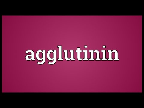 Header of agglutinin