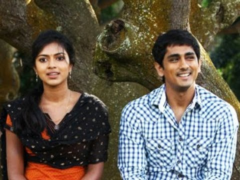 I didnt fight with Siddarth: Amala Paul
