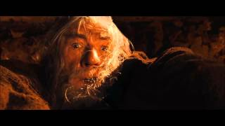 Fuck her right in the pussy! (Gandalf HD)