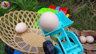 Xe tải phát hiện ổ trứng gà rừng đồ chơi Cars Trucks Chicken Egg for Kids