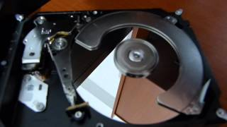SEAGATE BARRACUDA 3000 GB ARIZASI !!!!