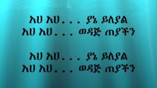 Netsanet Ayele Yitawoj Beyfa - Lyrics
