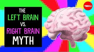 The left brain vs. right brain myth - Elizabeth Waters by : TED-Ed
