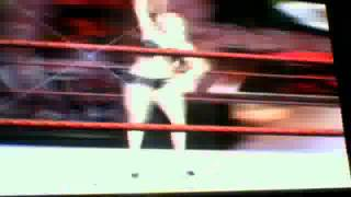 WWE SmackDown vs Raw Torrie wilson vs Sable bra and panties match