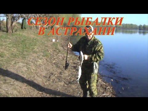 астрахань 2017 рыбалка видео