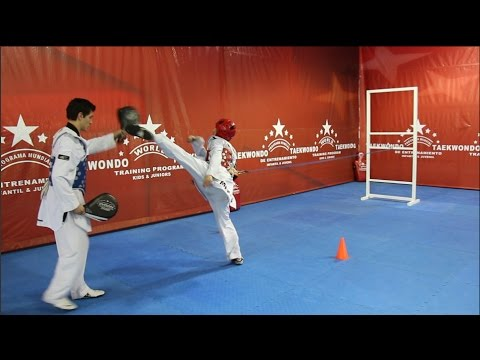 WORLD TAEKWONDO TRAINING PROGRAM- DVD NO.11 Image 1