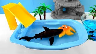 Sea Animals Names for Babies Shark Toys For Kids Video