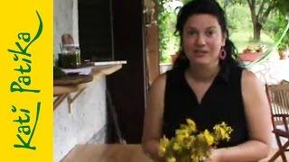 Kati-patika - Orbáncfű macerátum (gyógynövények, természetgyógyászat)