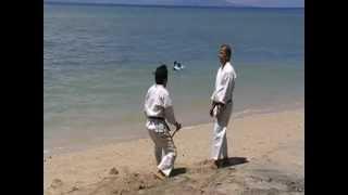 Master Deo Bascon and Master Ed Villarin (Martial Arts Techniques)