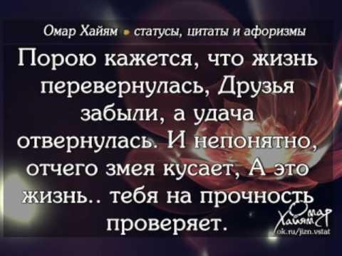 Лучшие цитаты и афоризмы мира