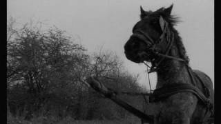 The Turin Horse (2011) - Official Trailer