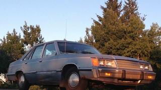 Meet the 1983 Ford LTD