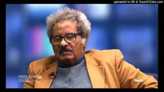VOA Interview With Ethiopian Politician Prof. Mesfin Weldemariam (መስፍን ወልደ ማርያም)