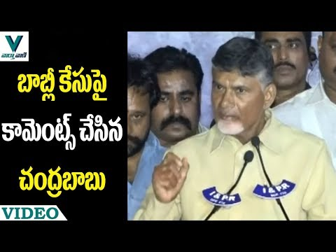 CM Chandrababu Comments on Babli Case - Vaartha Vaani
