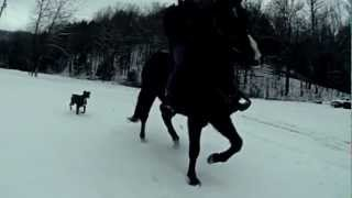 GoPro Hero3 240fps Slow Motion Horse Riding in the Snow Southern Wv