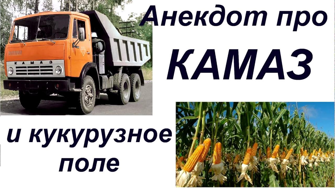 Анекдот про камаз и кукурузное поле скачать