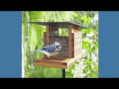 lowes bird house plans