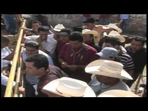 Bronca En La Corraleta...Memo Ocampo vs Organizador. (Los Destructores En La Luz Texas Gto)