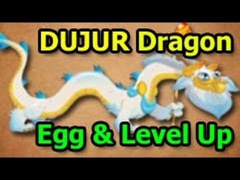 DUJUR DRAGON Dragon City Egg and Level Up