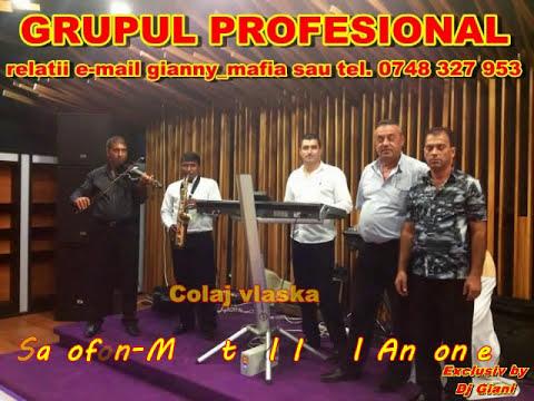 Grupul Profesional-Colaj vlaska saxofon ( Ionel de la Cetate )