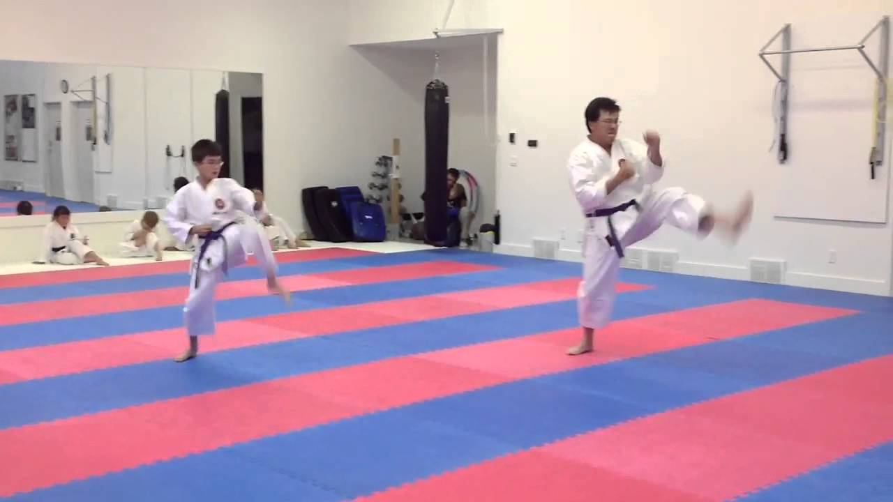 Purple Belts Testing For Brown