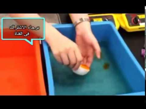 شاهد كيف يتم صناعة البيض الصينى المغشوش من أخطر ما يمكن thumbnail
