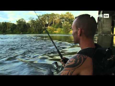 Pêche du silure sur la Garonne | Globe Fishing | Lot-et-Garonne 5/5