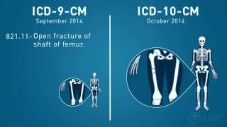 What is ICD-10?