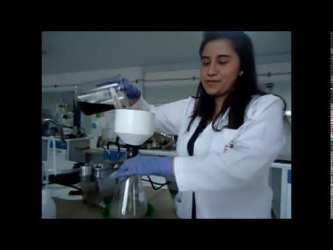 Técnicas para el desarrollo de proyectos: Filtración al Vacío.