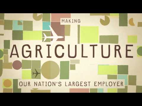 Food for Thought - What do America's Farmers grow?