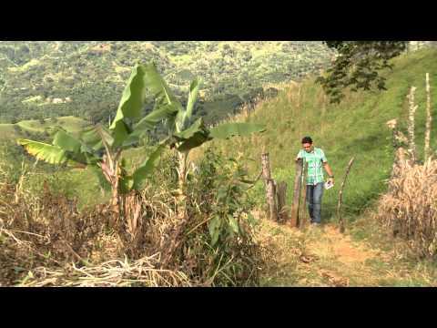 U de A - Nueve emisoras del sistema de radio educativa en Antioquia - La U en Cifras