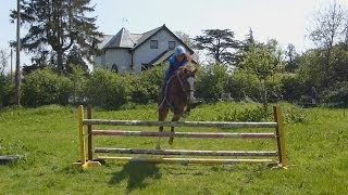 Jumping Jazz Bareback and In a Headcollar