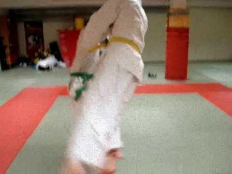 JUDO Harai tsuri komi ashi. Music: Drowning pool - Bodies Image 1
