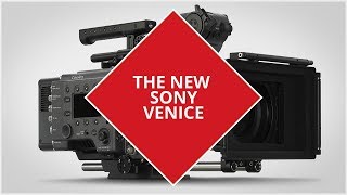 Sony CineAlta Venice: everything you wanted to know and more