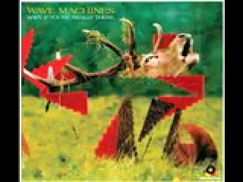 Wave Machines Wave - if you're really there