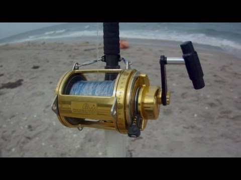 Shark Fishing Tips - How to Set the Drag