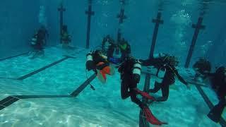 William goes Scuba Diving