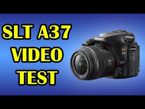 Comparación: Formatos de Video Sony Alpha 37 (SLT A37)