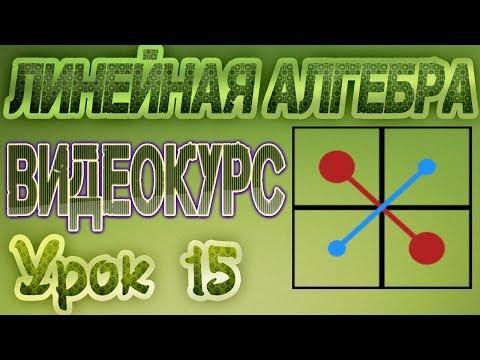 15. Матрицы. Виды матриц