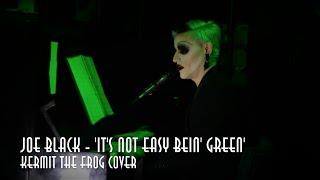 Watch Kermit The Frog Bein Green video