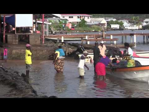 USAID's Hapi Fis App Helps Solomon Islands Assess Fish Stocks