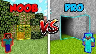 Minecraft NOOB vs. PRO: SECRET DOOR in Minecraft!