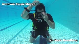 PADI Open Water Diver Course Skills