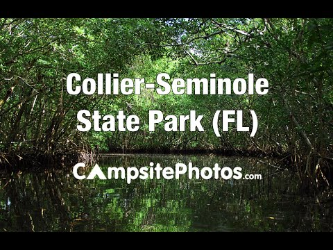 Collier-Seminole State Park, Florida Campsite Photos