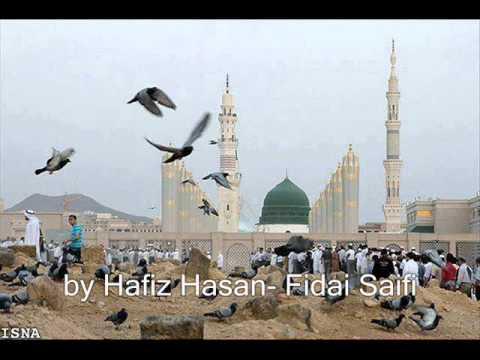 Ya Rasool Allah-new Saifi Naat By Hafiz Hasan Fidai Saifi video
