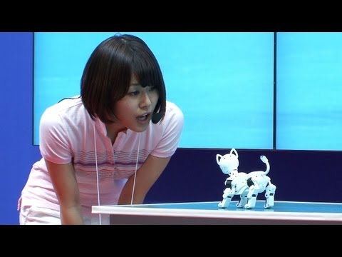 i-SODOG robot pet dog controlled via smartphone, can communicate with its friends  #DigInfo