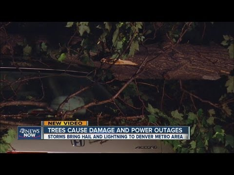 Power outages and storm damage across Denver