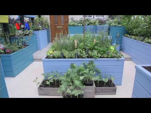 ایدههایی برای احیای باغهای خانگی