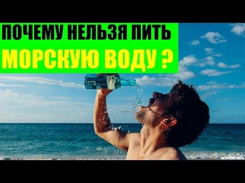 Почему нельзя пить соленую морскую воду