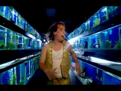 DUI - HAR MAR SUPERSTAR (Music Video)